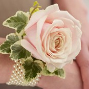 Soft Pink Rose & Pearl Wrist Corsage