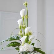 Luxury Calla and Ornithogalum Vase