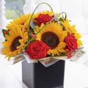 Rose & Sunflower Cube