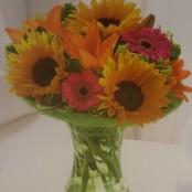 Sunflower Perfect Gift