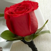 Red Rose Boutonniere