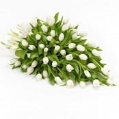Tulip Posy