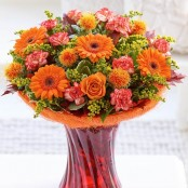 Russet Blaze Perfect Gift with Chocolates
